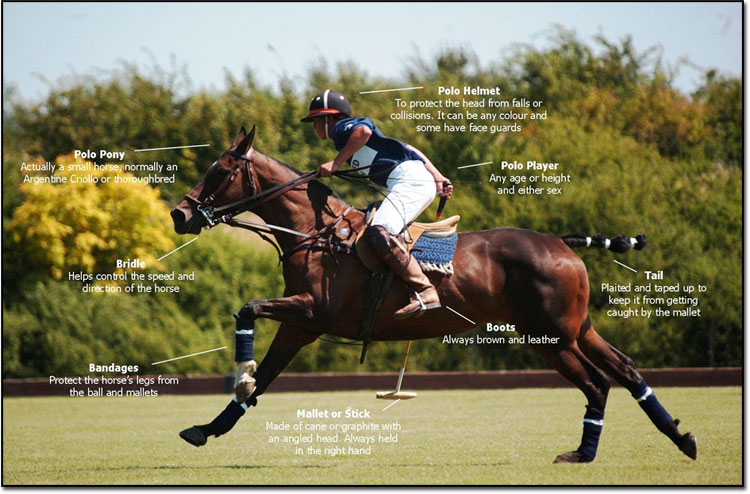sport-of-polo-1